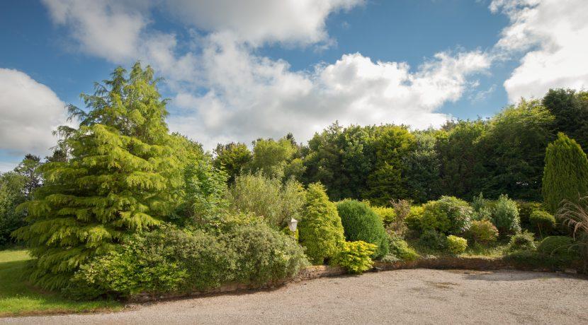 Bluebanks(N) Garden Back 01